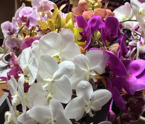 Locally-grown orchids add an exotic detail to any bouquet.